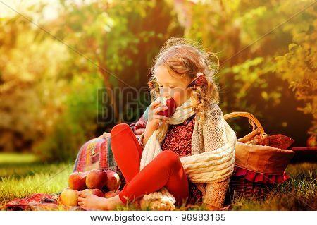 happy child girl eating fresh red apples in sunny autumn garden