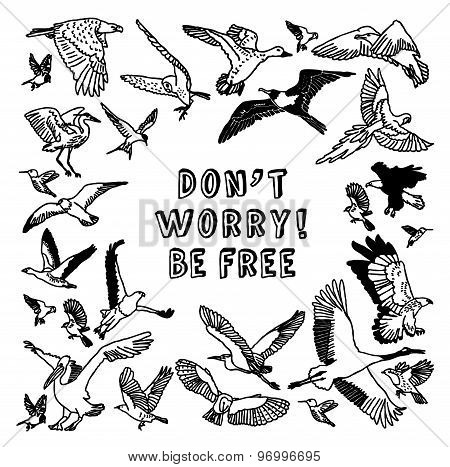 Birds card be free black and white