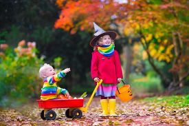 stock photo of little sister  - Little girl in witch costume and baby boy in wheelbarrow holding a pumpkin playing in autumn park. Kids at Halloween trick or treat. Toddler with jack-o-lantern.