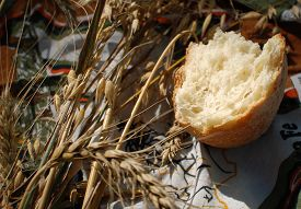 pic of hunk  - Hunk of white bread and stalks of oats and wheat - JPG
