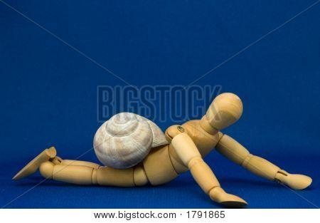 Human Snail