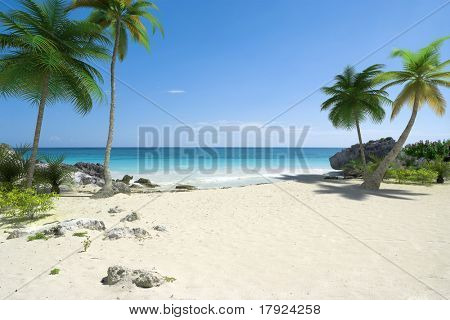 Beautiful tropical deserted beach with palmtrees and a blue sea