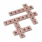 Risk Management Strategies Crossword - Accept, Avoid, Reduce and Transfer. Risk manage concept. Rose poster