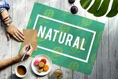 Natural Vitality Reviving Graphic Design Word poster