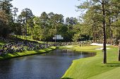 image of golf  - the 16 hole at Augusta National golf club during the Masters - JPG