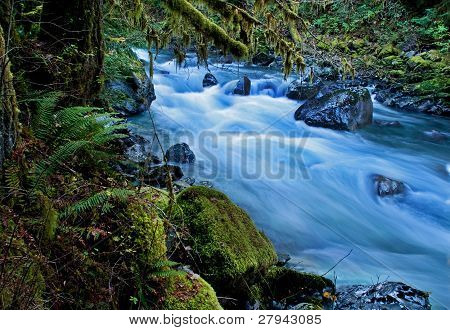 Mountain River In Forest - Nooksack River Washington
