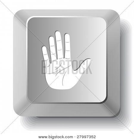 Stop hand. Vector computer key.
