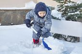 Cute Little Caucasian Baby Boy Shovels Snow In The Yard With Fir-tree On Background. Child With Shov poster