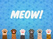 Cat Paw Flat Background. Cats Cartoon Pet Paws, Print Kitten Texture, Pets Shelter Poster poster