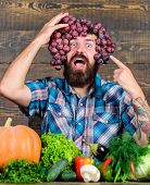 Grapes From Own Garden. Farming Concept. Man Hold Grapes Wooden Background. Farmer Bearded Guy With  poster