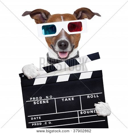 Cão de óculos 3D do filme Clapper Board