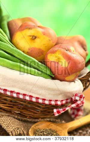 Raw Green Beans and Potatoes