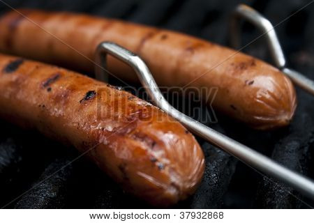 hot dogs roasting on an open fire