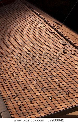 Typical Roof Of Mountain - Trento Italy