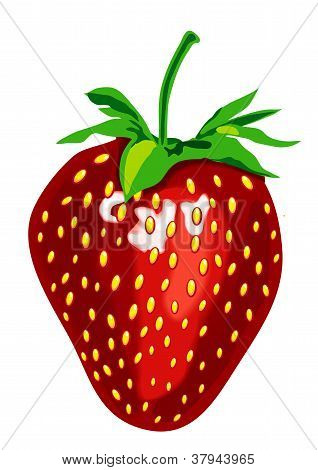 Appetizing Strawberrie