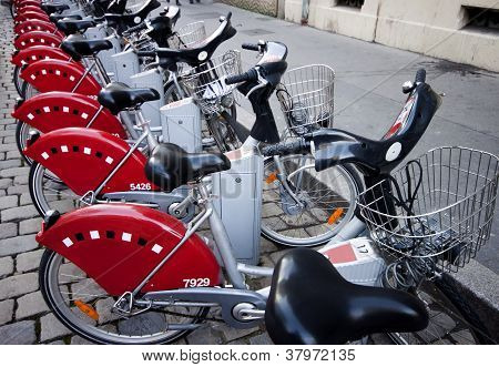 Electric Bycicles Rental