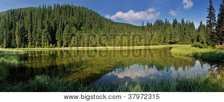 Marichaika Lake Among Fir Trees Panorama
