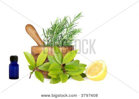 Lemon And Herbs