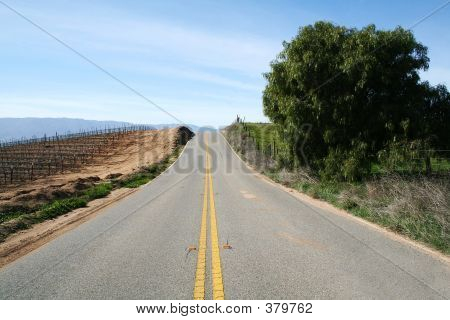 Mid-afternoon Country Road