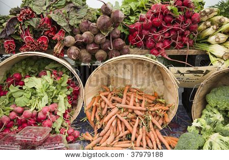 Farmer Market Produce