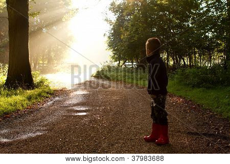 Sun Through Trees With Boy On Path