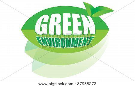 Entorno verde