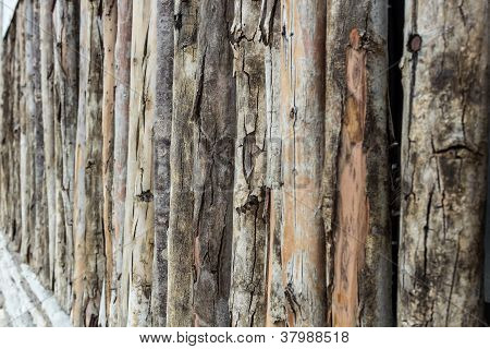 Closeup Wooden Wall From Old Logs
