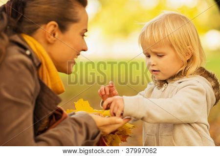 Mother Showing Baby Fallen Leaves And Chestnuts