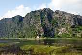 Fisherman In Van Long Natural Reserve (ninh Binh, Vietnam)