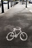 image of bike path  - View of a dedicated bike path with bike symbol painted on the asphalt - JPG