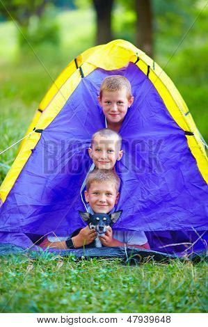 Funny Kids And Dog Looking Out From Tent. Summer Camp