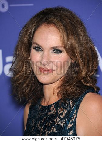 LOS ANGELES - JUN 12:  Amy Brenneman arrives to the Women In Film's 2013 Crystal + Lucy Awards  on June 12,2013 in Beverly Hills, CA
