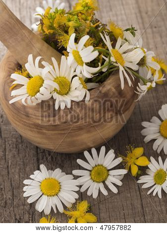 chamomile and st john's wort