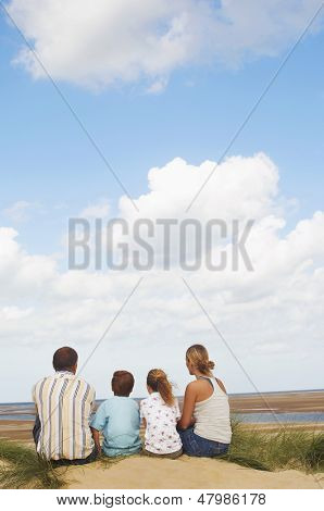 Rear view of a family sitting on sand and looking at view on beach