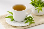 image of naturopathy  - Lemon verbena Herbal Tea in a cup - JPG