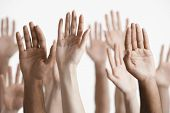 stock photo of waving hands  - Closeup of multiethnic men and women raising hands against white background - JPG