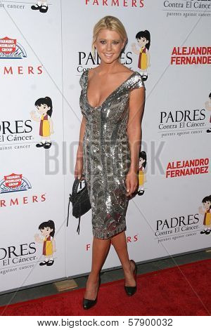 Tara Reid  at the 8th Annual Padres Contra El Cancer's 'El Sueno De Esperanza' Benefit Gala. Hollywood and Highland Grand Ballroom, Hollywood, CA. 10-07-08