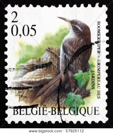 Postage Stamp Belgium 2000 Short-toed Treecreeper, Bird