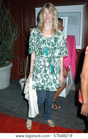 Laura Dern  at the Opening Party for the Pippa Small Jewellery Store. Pippa Small Jewellery, Santa Monica, CA. 11-19-08
