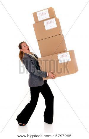 Secretary Postal  Package