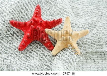 Colored Starfish On A Fishing Net Background