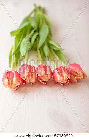 Tulips On White Wood Table
