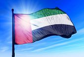 image of emirates  - United Arab Emirates flag waving on the wind - JPG