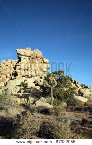 A rock formation with a face in it at Joshua Tree National Park Yucca Valley in Mohave desert California USA