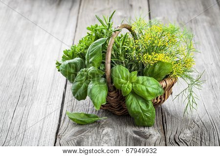 Basket Of Freshly Picked Herbs Including Basil, Rosemary, Dill And Parsley