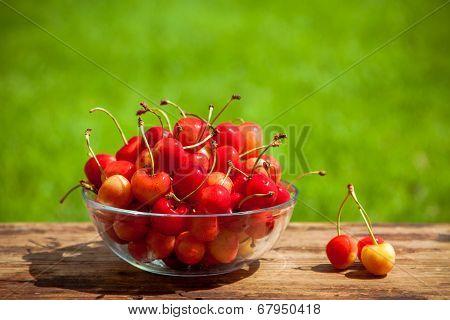 Rainier Cherries In A Bowl On Green Grass