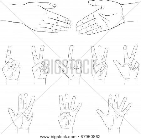 Hands. Vector set. Isolated on white background