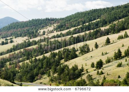 Hillside Along Chief Joseph Scenic Byway