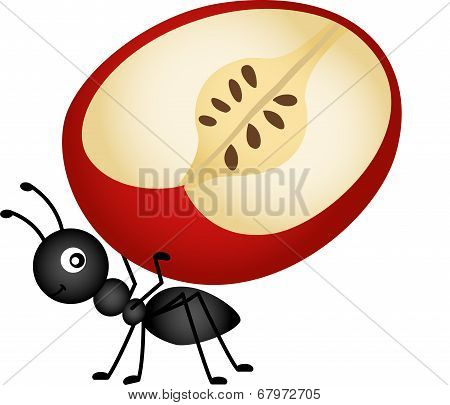 Ant Carrying Apple Slice