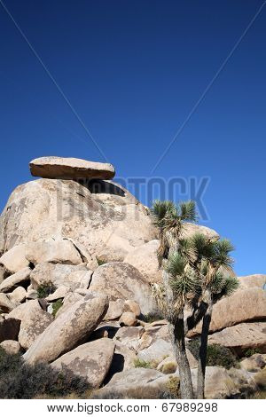 Cool Ancient Volcanic Rock Formations and Natural Desert Plants for the landscape of the Joshua National Forest in Southern California U.S.A.  A must visit destination for all travelers